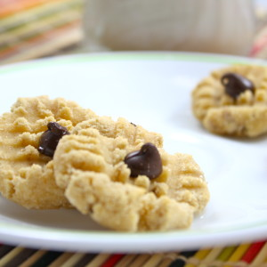 The World's Healthiest Cookie
