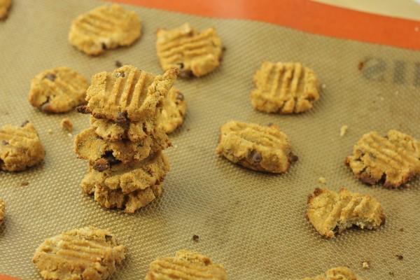 Chocolate Chip Coconut Flour Cookies