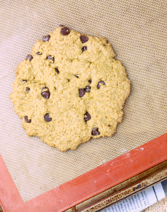 Chocolate Cookie 3